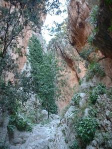 Valle que corta el Monte Parnaso, cerca de la fuente Castalia (Foto Flickr de G Canis )